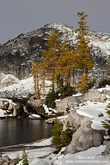 Larches and Sprite Lake