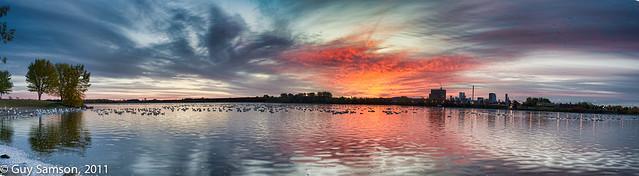 Sunrise On Bulstrode Reservoir / Lever de soleil sur le réservoir Bulstrode