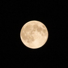 October moon, waxing gibbous