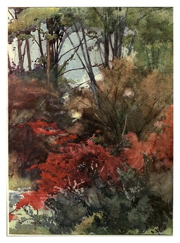 025- Arces japoneses en primavera- Flower grouping in English, Scotch & Irish gardens 1907- Margaret Waterfield