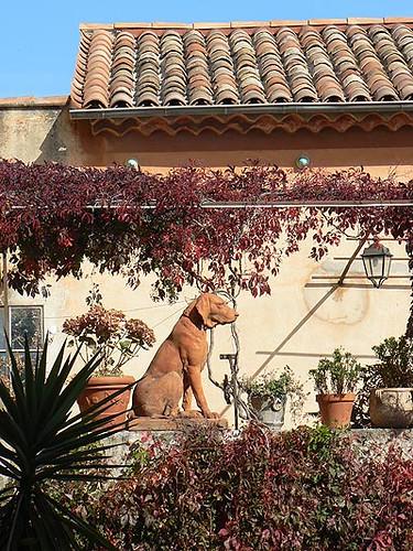 terrasse et chien de garde.jpg