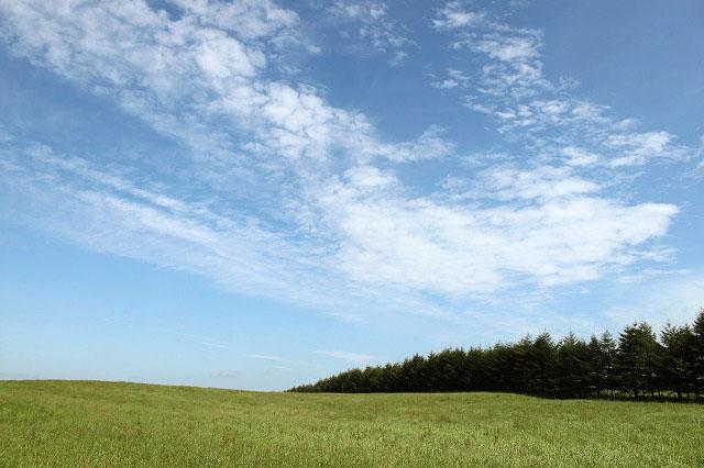 牧草地を眺めながら、別海秋のフットパス