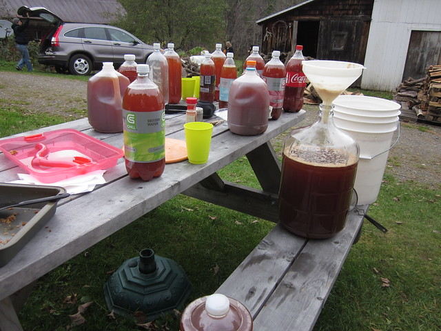 apple cider pressing