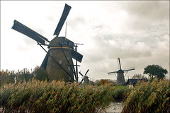 World Heritage Kinderdijk (Foto Martien (thanks for over 2.000.000 views)) Tags: autumn holland history fall mill netherlands dutch architecture moulin mhle arquitectura herfst nederland windmills unesco worldheritagesite molino architektur 1997 picturesque kinderdijk alblasserwaard molen architectuur pictorial niederlande historisch windmhle watermolen windmolens wassermhle najaar molinosdeviento patrimoniomundial moulinvent fotogeniek unescoworldheritagelist poldermolen schilderachtig listedupatrimoinemondial werelderfgoedlijst a550 overwaard blokweer nederwaard provinciezuidholland provinceofsouthholland welterbes martienuiterweerd carlzeisssony1680 bestcapturesaoi martienarnhem sonyalpha550 mygearandme mygearandmepremium martienholland mygearandmebronze mygearandmesilver mygearandmegold mygearandmeplatinum ringexcellence fotomartien poldernieuwlekkerland