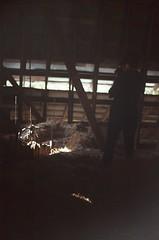 Abandoned Barn (LindsayIredale) Tags: art abandoned film barn photography photo lindsay 2011 iredale