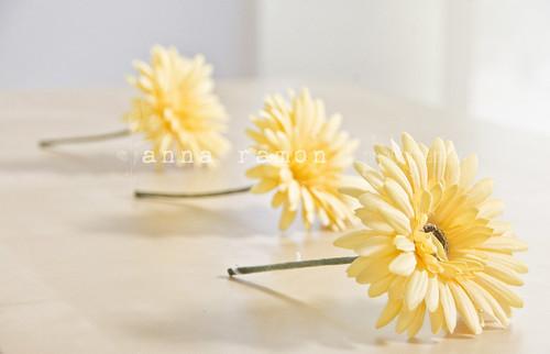 3 flores amarillas