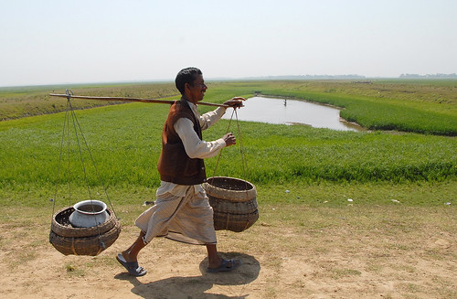 A successful fisherman with his catch, Bangladesh. Photo by WorldFish, 2007