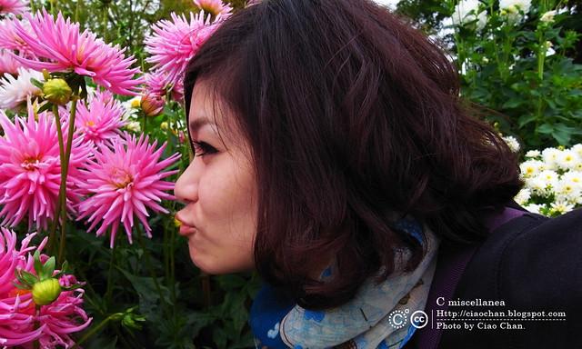Bonjour Giverny~ 吉維尼 Jardins de Monet 莫內花園R1041484