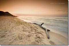 Driftwood (V.kryukova) Tags: longexposure sunset sea summer vacation seascape sand filter tobacco cokin gradual azov neutraldensity gnd8 southrussia