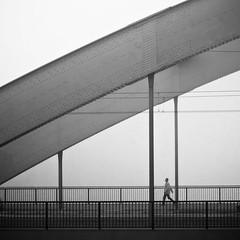fog I (thombe77) Tags: street bridge bw white black lines fog canon river germany deutschland eos 50mm nebel magdeburg sw brücke fluss schwarz elbe linien weis 400d