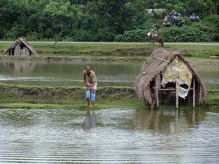 Barisal pond, Bangladesh. Photo by Siew Sau Yeng, 2010