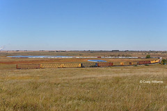 DMVW 5439 North (missinglink34) Tags: barn northdakota local sd50 dmvw