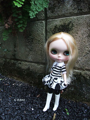 Taking photos of Blythe 1