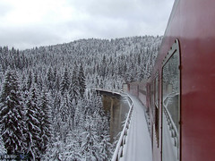 train in snow... (Hurricane.189) Tags: winter train acc romania iasi cluj cfr 1833 vatra dornei 2054 larion iasicluj