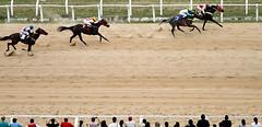 Grande Prêmio Bento Gonçalves 2011 (Igor Sperotto) Tags: brasil portoalegre cavalos riograndedosul corridadecavalo jockeyclubdoriograndedosul hipódromodocristal grandeprêmiobentogonçalves