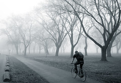 into the fog (syncros) Tags: park toronto fog cycling cyclist foggy biking coronation biketo fogto