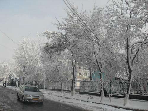 Последствия снегопада в Курган-тюбе (13)