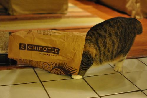 Chipotle!