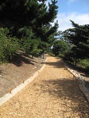 park path (McKinley Square Park lower hillside) (throgers) Tags: sanfrancisco california guesswheresf foundinsf potrerohill mckinleysquare gwsf mckinleysquarepark