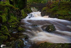"""where streams of whiskey are flowing"" (Allan England ~ Photography) Tags: uk bridge wedding portrait england motion blur water river landscape photography allan waterfall moss nikon rocks stream photographer stones tripod lakes cumbria fells shutterrelease thelakedistrict thirlmere d600 thepogues nikon1870mm polarisingfilter nikond80 nikond600 nikonuk northwestofengland thirlmerereservoir allanengland wwwphotographybyurbaneyescom flickrstruereflection1 wherestreamsofwhiskeyareflowing thirlmereinthelakedistrict allanenglandphotography allanenglandlandscapephotography wwwalllanenglandcom allanenglandcom allanenglandphotographer allanenglandlandscapephotographer allanenglandweddingphotographer allanenglandportraitphotographer"