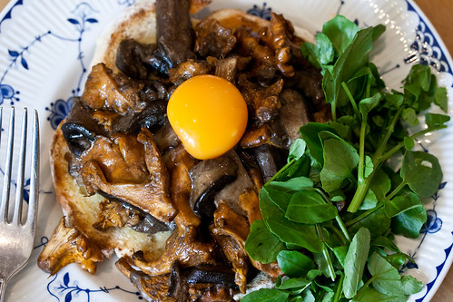 Mushrooms with watercress-10