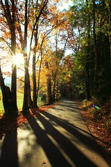 Well hello there Fall, nice to see you again. (WeeLittlePiggy) Tags: cove cades