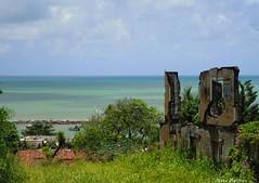 Do alto de Olinda (Mara Hermes) Tags: brasil recife pernambuco olinda oceanoatlantico frias2011