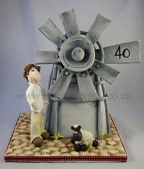 Windmill cake (Dot Klerck....) Tags: man windmill southafrica sheep farm capetown dot wellington karoo sculptedcake eatcakeparty