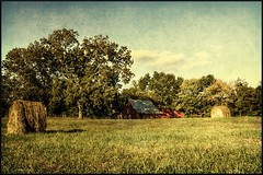 Southern Days (Scott Farrar - dsfdawg) Tags: old trees red sky green grass leaves yellow barn rural ga georgia ruins decay wheat south country ruin days historic southern forgotten weathered hay bales hdr highdynamicrange textured bygone dsfotography dsfdawg