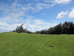 Turtle Bay Colf Course 245