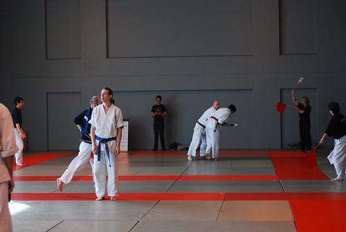 6299951316 a287cc853d London & Hove Shodokan Aikido Festival 2011