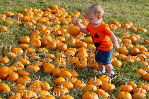 2011-10-19 - Pumpkin Patch-11