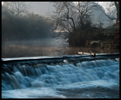 Misty Cart (Elamcelt) Tags: water filters weir morningmist pollokpark silkywater hitechgradfilters leefilterfoundationkit