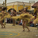Swirling Grass Skirts of the Traditional Dancers in Lima