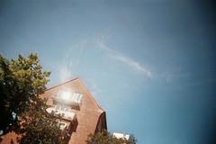 , (Benedetta Falugi) Tags: film analog hamburg 22mm eximus benedettafalugi wwwbenedettafalugicom