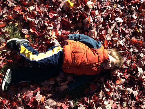 laying-in-leaves