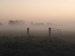 Misty farm. (Snoek2009) Tags: sunset mist green fog fence wow farm winsum oldenzijl vividstriking ringexcellence dblringexcellence tplringexcellence eltringexcellence ruby20 rubyfrontpage wowl2 wowl3