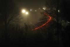 Follow the red line (johan wieland) Tags: mist fog dense alkmaar nikon d90 jwtea