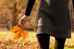 Autumn beauty {Explore #38} (Alexandre Moreau | Photography) Tags: beautifullight autumncolors explore nikkor85mmf14 telegraphhillpark autumnbeauty nikond7000 onlyonexplore