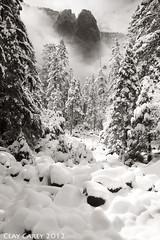 Marshmallow Creek (Clay Carey) Tags: trees winter light blackandwhite mist snow fog creek falls yosemite