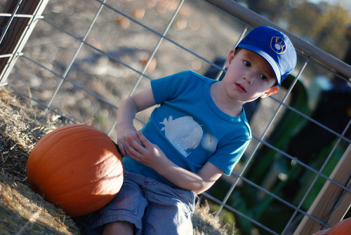 Pumpkin Patch 2011