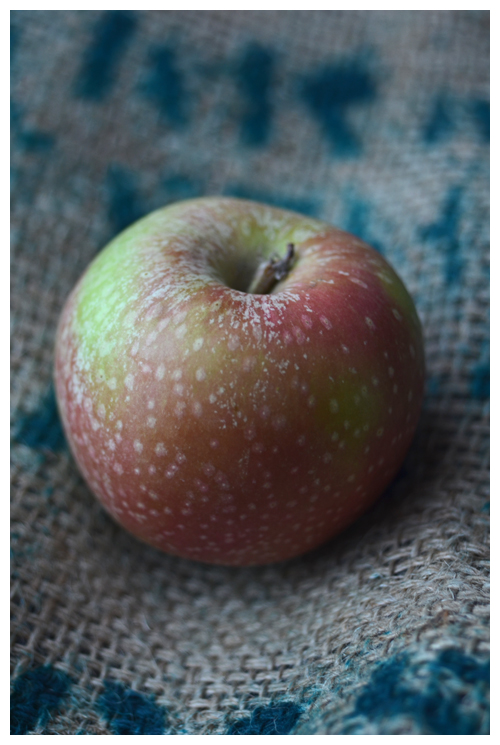 Stayman Apple© by Haalo