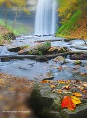 artsy fartsy ts (Rex Montalban Photography) Tags: autumn ontario fall rock leaf colours waterfalls stcatharines ts tiltshift decew notanhdr powerglen rexmontalbanphotography