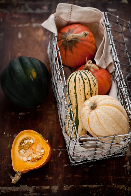 Autumn Squash Cooking