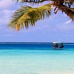 Maldive 7268