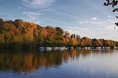La rivire Erdre (rogermarcel) Tags: autumn color automne river landscape rivire paysage couleur mygearandme