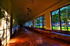 Hallway towards wisdom (Jim Nix / Nomadic Pursuits) Tags: morning school windows color austin campus ut nikon texas tx hallway universityoftexas longhorns hdr highdynamicrange d700 nomadicpursuits
