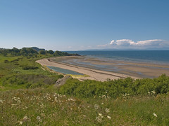 beach from Greenan Castle (The Mucker) Tags: