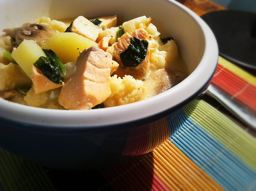 Salmon & Cauliflower Chowder by mjd-s