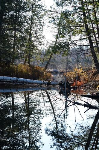 mirror lake_136